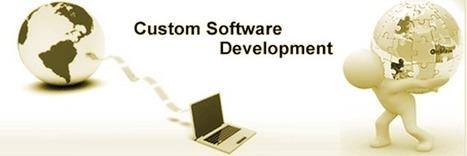 Customized Software Development Delhi | Ads On Net | Scoop.it