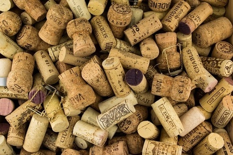 Is Climate Change Ruining Wine Corks? | Vinitours | Scoop.it