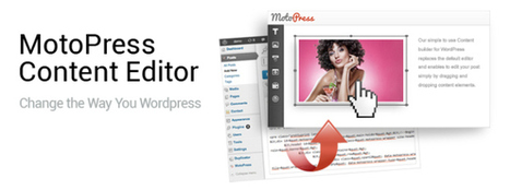 MotoPress Content Editor - Drag & Drop plugin for Any WordPress Theme | french properties | Scoop.it