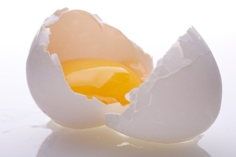 Eating Raw Eggs – Good or Bad | Health Tips | Scoop.it