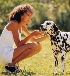 Mysterious Symptoms? - 11 Diseases You Can Catch From Pets - Ask Dr. Maxwell ... | Healing Chronic Pain & Disease | Scoop.it