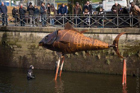 Bretagne - Finistère : 1er avril oblige (5 photos) | photo en Bretagne - Finistère | Scoop.it