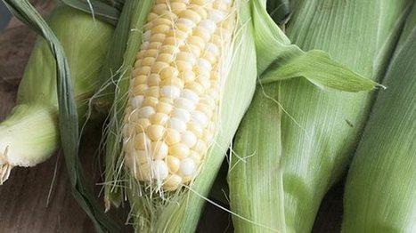 Agroindustria solicita al Gobierno que revise costos | mercadeo en venezuela | Scoop.it