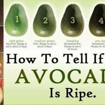How to Tell if Your Avocado Is Ripe | Visual.ly | What's Up With | Scoop.it