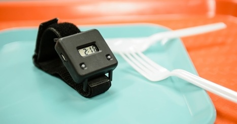 Useful Weight Loss Ideas: Count Bites Not Calories ! Wearable Technology To Lose Weight | Useful Weight loss Ideas | Scoop.it
