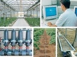 Serra sostenibile e riduzione dell'energia - AgroNotizie - Attualità | SOS TERRA:solidando | Scoop.it