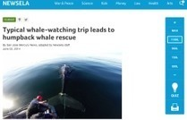 Newsela for Leveled Nonfiction Articles   Serious-Minded Games   Scoop.it