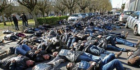 VIDEO : à Périgueux, les agriculteurs mettent en scène la mort de l'agriculture | Agriculture en Dordogne | Scoop.it