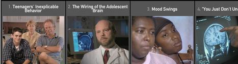 Inside The Teenage Brain   FRONTLINE   PBS   GESTION COGNITIVE   Scoop.it