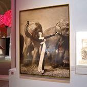 Les marques, nouveaux objets de musée - Le Monde | Festivals - Musées - arts et spectacles | Scoop.it