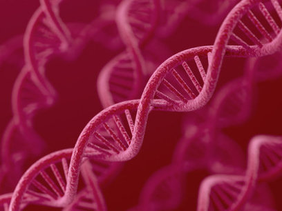 Scientists discover new system for human genome editing: Game-changing technology could disrupt both scientific, commercial landscape -- ScienceDaily | Host Cell & Pathogen Interactions | Scoop.it
