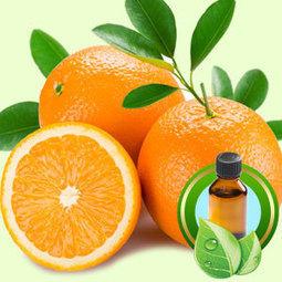 Orange Midseason ESSENTIAL OIL | Essential-Oils | Scoop.it