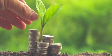 Start-up : quels investisseurs à quels moments ? | Acheteurs Acheteuses du siècle 21 - Buyers of 21th century | Scoop.it