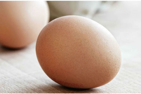 Système U s'engage à ne plus vendre d'oeufs de poule élevées en cage pour sa MDD d'ici à 2020   News.enseignes   Scoop.it