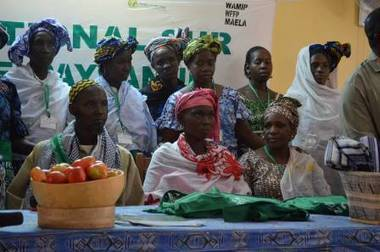 Il n'y a pas d'agroécologie sans les femmes! | Chimie verte et agroécologie | Scoop.it