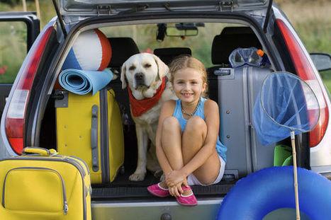 Vacances en voiture: les règles à suivre à l'étranger (Europe) | Tout sur le Tourisme | Scoop.it
