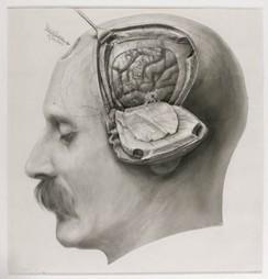 Las representaciones mentales | El Poder de la Mente | El poder de la mente | Scoop.it