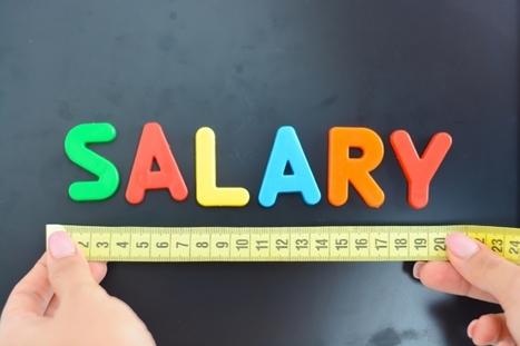 Sur quels indicateurs baser le calcul de la rémunération variable dans la fonction achats? | contrôle de gestion et tableau de bord | Scoop.it
