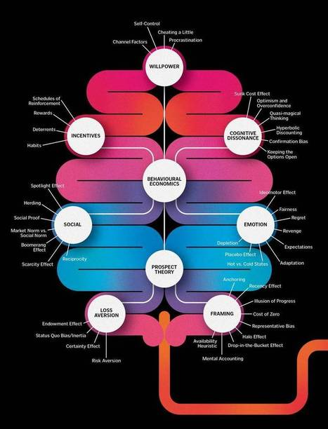 Mind/Body Science Blog — economicafkar: This is your brain on behavioral...   With My Right Brain   Scoop.it