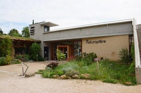 Le Naturoptère de Sérignan, pour tout savoir sur les insectes ! Provence Mag | Carpentras Holidays | Scoop.it