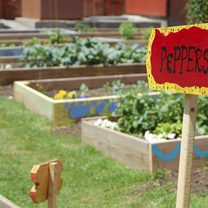 Crowdfunding for 100 Urban Gardens Across America | Sustainibility | Scoop.it