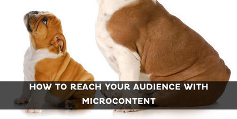How to Tailor Microcontent to Different Audiences | Kapost | Show Up Public | Scoop.it