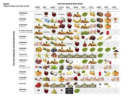 table-of-esters-and-their-smells.jpg (2481x1754 pixels) | Education | Scoop.it