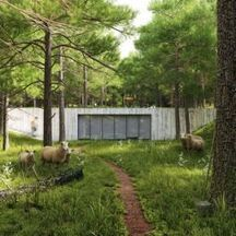 Inspiration - Trees & Foliage Vol. 4 | CG Architecture - Inspiration | Scoop.it