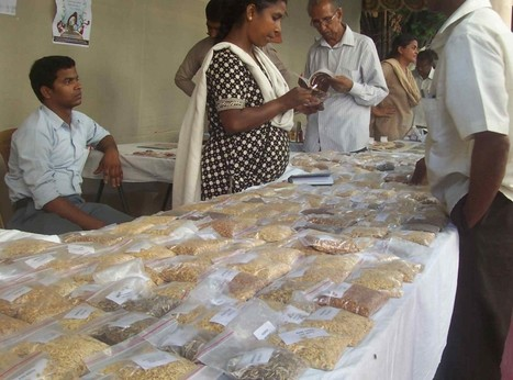 Kolkata Seed Festival calls for stressing on collective heritage | Agricultural Biodiversity | Scoop.it