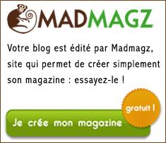 Le blog de Madmagz » Les grandes tendances du e-commerce | Agence Profileo : 100% e-commerce Prestashop | Scoop.it