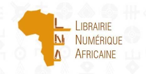 La numérisation des livres en Afrique, enjeu d'avenir | Gestion des connaissances et TIC pour le développement | Scoop.it