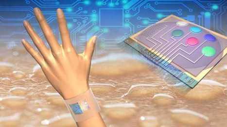 Körperdaten: Neues Sensorsystem analysiert chemische Stoffe im Schweiß   heise online   Intelligente Netze   Scoop.it