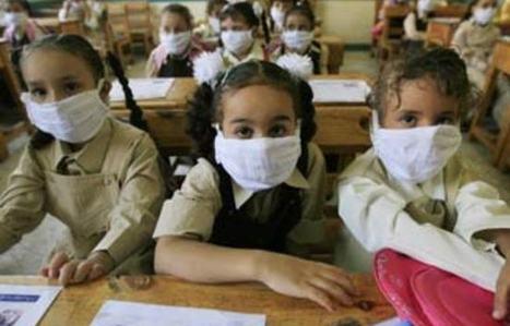 L'épidémie de grippe porcine (H1N1) a fait 24 morts en Egypte depuis le mois de décembre dernier | Égypt-actus | Scoop.it