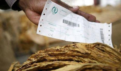 Responsabilidad social: el último disfraz de la industria del tabaco   Negocio responsable   Scoop.it