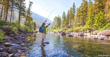 All about the bass | Farming, Forests, Water, Fishing and Environment | Scoop.it