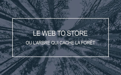 Le Web to Store, ou l'arbre qui cache la forêt - JDN | Trafic magasins | Scoop.it