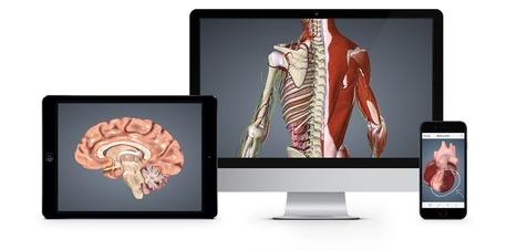BioDigital: 3D Human Visualization Platform for Anatomy and Disease | Healthy Living Essentials | Scoop.it
