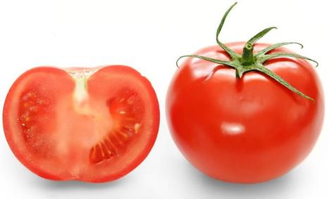 Novedoso proyecto logra obtener plástico biodegradable a partir de la piel del tomate | Ecologia y medio ambiente | Panamá | Activismo en la RED | Scoop.it
