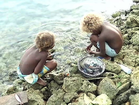 #Solomons #battles with #RisingSeas ~ #Relocation But struggling to deal with it's own #displaced People! | Rescue our Ocean's & it's species from Man's Pollution! | Scoop.it