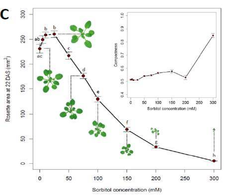 What is Stress? Dose-Response Effects in Commonly Used In Vitro Stress Assays | Plant Stress | Scoop.it