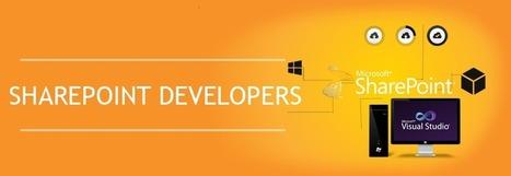 Sharepoint Designers   Dream Orbit   Scoop.it