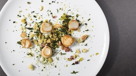 How food becomes art: scallops with texture and scents of autumn by chef Aurora Mazzucchelli   Wine Dharma   Italian food and wine   Scoop.it