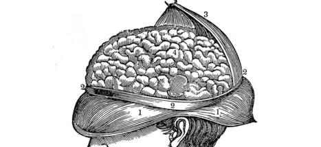 Selon le futurologue Ray Kurzweil, nos cerveaux seront connectés à Internet d'ici 2030 | Le pouvoir du transhumanisme | Scoop.it