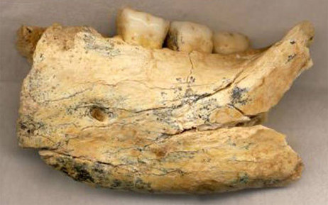 400,000 Year Old Fossil Helps Shed New Light on Human Evolution | Geology | Scoop.it