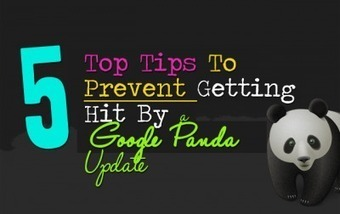 5 Steps To Prevent Getting Hit By A Google Panda Update | Internet Marketing | Scoop.it