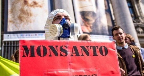 Monsanto to be given right in decisions to ban GMOs | Friends of the Earth Europe | GMO GM Articles Research Links | Scoop.it