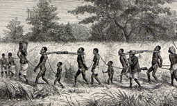 THE AFRICAN SLAVE TRADE: What Your Know -- and Perhaps Don't Know | Year 8 Topics | Scoop.it