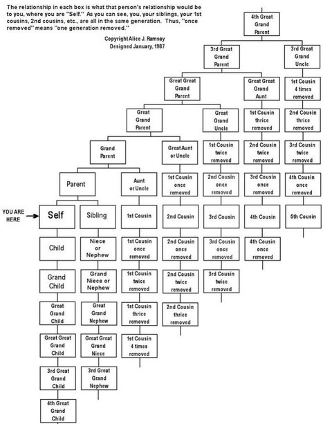Here's a Handy Chart Explaining Confusing Family Connections - And How to Keep From Killing Each Other | Chroniques d'antan et d'ailleurs | Scoop.it