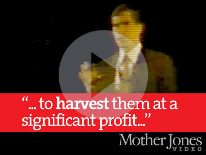 "NEW ROMNEY VIDEO: In 1985, He Said Bain Would ""Harvest"" Companies for Profits 