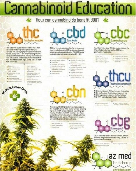 Understanding Cannabis Oil | Hemp Miracle | Scoop.it